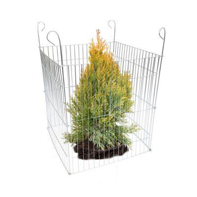 płotek, siatka, ogrodzenie zabezpieczające drzewka, krzewy, iglaki ikwiaty wogrodzie